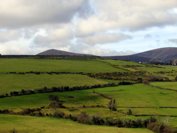 Link to Allison Doherty's Ireland essays and photos page